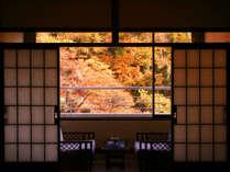 紅葉を臨む客室