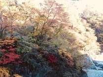 対岸には足湯処も♪ 秋には美しい紅葉を眺めながら