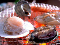 日本海の旬の魚介類を活きたまま炭火で炙って。
