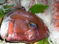 イキイキ活魚・船盛りプラン