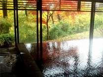 大浴場から四季折々の景色を堪能♪那須では珍しい薄茶色のお湯は自家源泉100%かけ流し