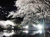 はままつフラワーパーク夜桜ライトアップ入園券付♪ずわい蟹食べ放題約70種のバイキング宿泊プラン