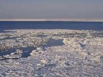毎年1月下旬から3月上旬までオホーツク海を埋め尽くす流氷が見られます。