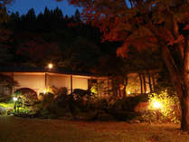 夜は木々に照明が灯り幻想的に