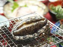 【4~5月限定】今が美味しい季節です♪アワビの踊り焼きと鯛しゃぶ×鯛茶漬け☆!![1泊2食付]