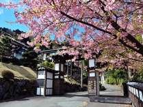 横浜藤よし伊豆店 (静岡県)