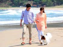 関の江海水浴場までお散歩◇車で約10分◇