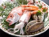 境港直送の旬の新鮮魚介類