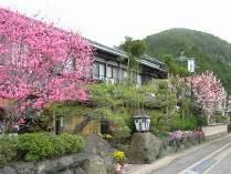 京都府:旅荘 茶谷