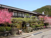旅荘 茶谷 (京都府)