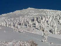 ★無料送迎あり★樹氷の森・阿仁スキー場でスキー&スノボーを満喫♪
