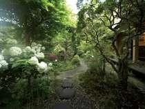 季節の草花が楽しめる中庭