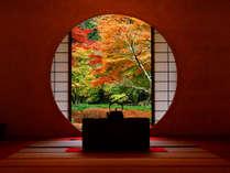 悟りの窓から見る本堂後庭園の紅葉~明月院