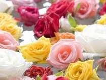 """【5月29日◆一日限定】大浴場が""""バラ風呂""""に変身♪心身ともに癒される香りで優雅な一日"""