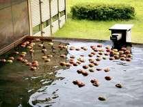 【2/16限定◆りんご風呂】りんごのほのかな香りに癒される冬の変わり湯♪りんごのお土産特典付き☆