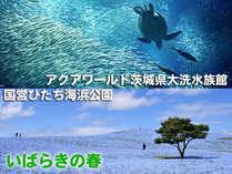 いばらきの春大洗水族館・海浜公園