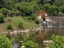 蓬の郷・水車