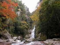日本の滝百選にも選ばれている、美しい景観の【笹の滝】