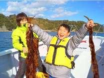 船で行って楽しい思い出に、ワカメ刈り体験!採ったワカメは宿で食べる事が出来ます。