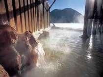 源泉100%にごり湯の露天風呂から真っ白に凍った然別湖を望む。
