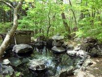 【4/28~5/6限定】ゴールデンウィークは名物露天風呂と自然を楽しむ温泉旅に出かけよう♪