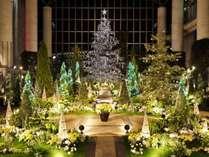 奇跡の星の植物館 クリスマスフラワーショー 11/17~1/20(ホテルよりお車約50分 有料)