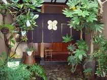 緑あふれる玄関