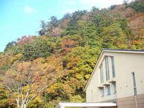 紅葉の大山 【しろがねも】もすっぽり秋色でございます。
