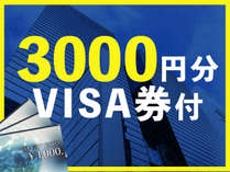 【VISAギフト券付】ビジネスパック300