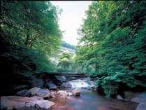 渋川から臨む当館。川床は鉄分のため赤茶色になっています。