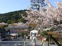☆渡月橋を渡り終えられたら、正面つきあたりが秀山閣。桜の頃。