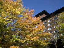 【外観】露天風呂からも、この木の紅葉をごらんになることが出来ます。