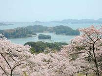 西行戻しの松公園 松島湾を一望出来る景勝地(ホテルより車で5分)