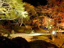 松島紅葉ライトアップ(円通院内)