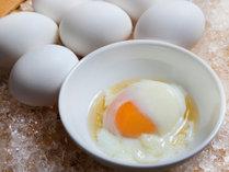 朝食ヴュッフェ料理の一例