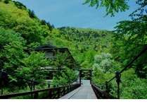 つり橋を渡るとそこは緑に囲まれた一軒家のような静寂が、、、。