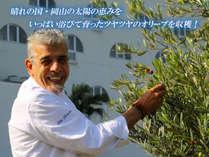 【夕・朝食付】オリーブ収穫体験とヘルシーギリシャ料理を味わう・牛窓オリーブ満喫プラン(禁煙)