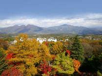 絶景の紅葉をお部屋から。例年では10月下旬~11月中旬に見ごろを迎えます。
