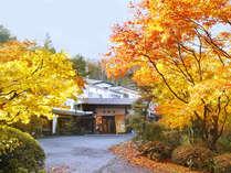 紅葉に彩られた四季の宿。(例年では10月下旬~11月中旬に見ごろを迎えます。)