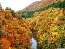 【紅葉時期光景♪】当館から徒歩1分!豊沢川の景色が一望できます^^