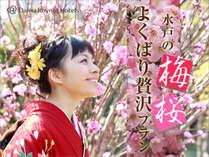 水戸の梅、桜よくばり贅沢プラン