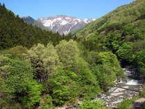 名山「谷川岳」が魅せる四季の美しさ ~春~
