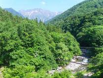 名山「谷川岳」が魅せる四季の美しさ ~夏~