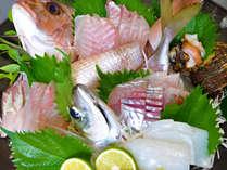 新鮮魚介尽くし◆自慢の磯料理を堪能!