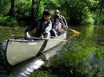 新緑の中での釧路川源流カヌー体験