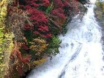 【秋】紅葉の奥日光湯滝