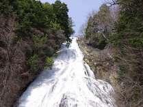 【春】新緑の季節を迎えた奥日光3名瀑の一つ 湯滝