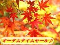 紫翠亭から!秋のタイムセール♪