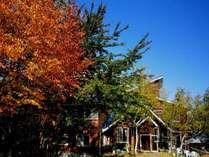 オーベルジュ グルービー玄関前の紅葉