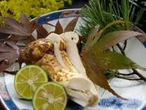 初秋限定・香りから秋を演出「生松茸を味わう」田舎会席。ワンランクアップ【じゃらん本誌掲載】プラン